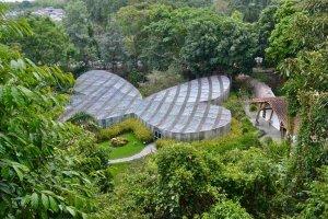 Botanical Garden, Pereira