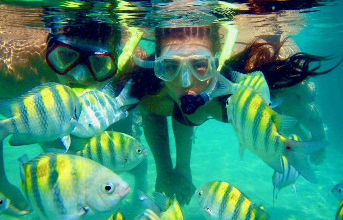 Snorkeling, Playa Cristal, Tayrona Park