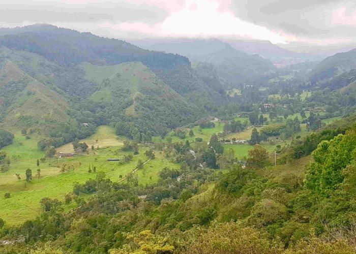 Cocora Valley, Salento
