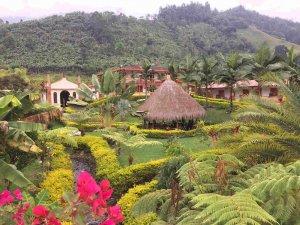View, Jardín