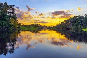 Lake, Amazonas