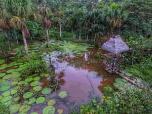 Hidden Lake, Amazonas