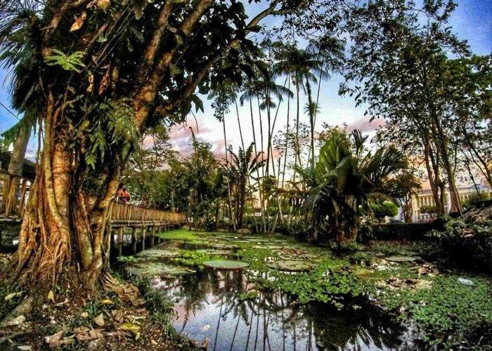 Parque Santander, Leticia
