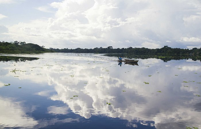Taraporo Lake, Amazonas