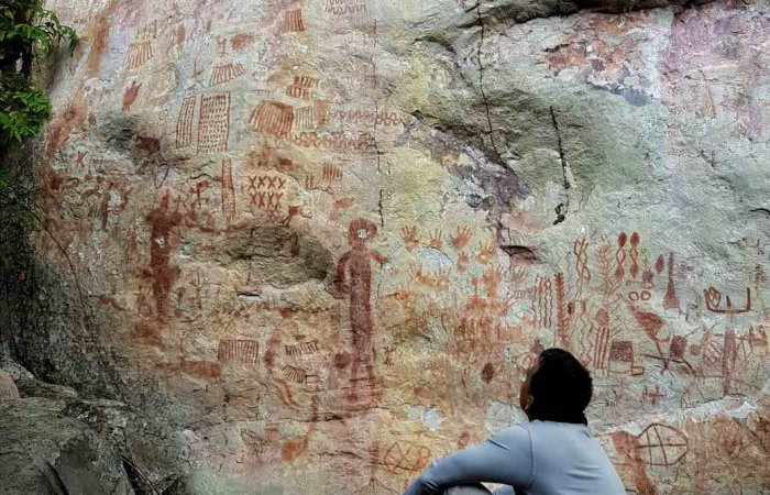 6 Days Rock Paintings & Amazon Jungle | BnB Colombia Tours