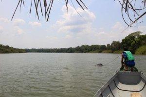 Laguna Damas del Nare