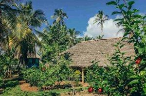 Armila Village
